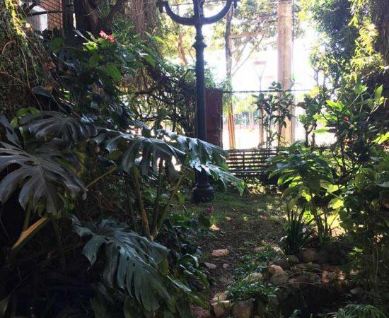 jardin-foto